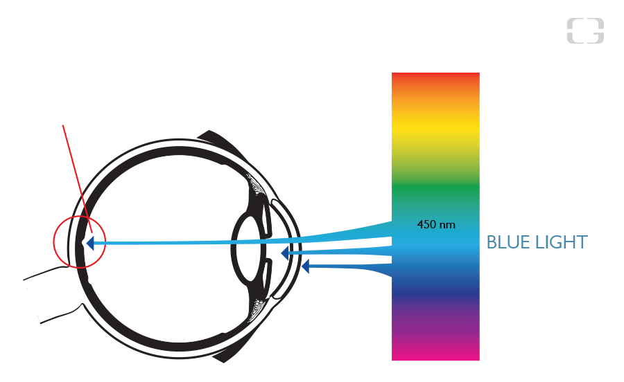 HEV Blue Light 2 - Fact and Data