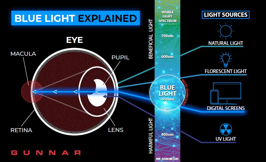 Chart on Blue Light Glasses